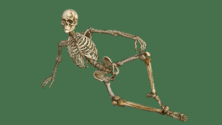 Skeleton-lounger